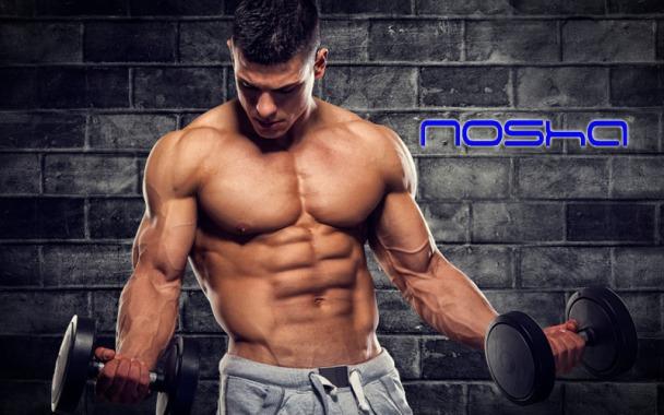 nosha_tesosterone-body_